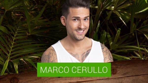 Marco Cerullo