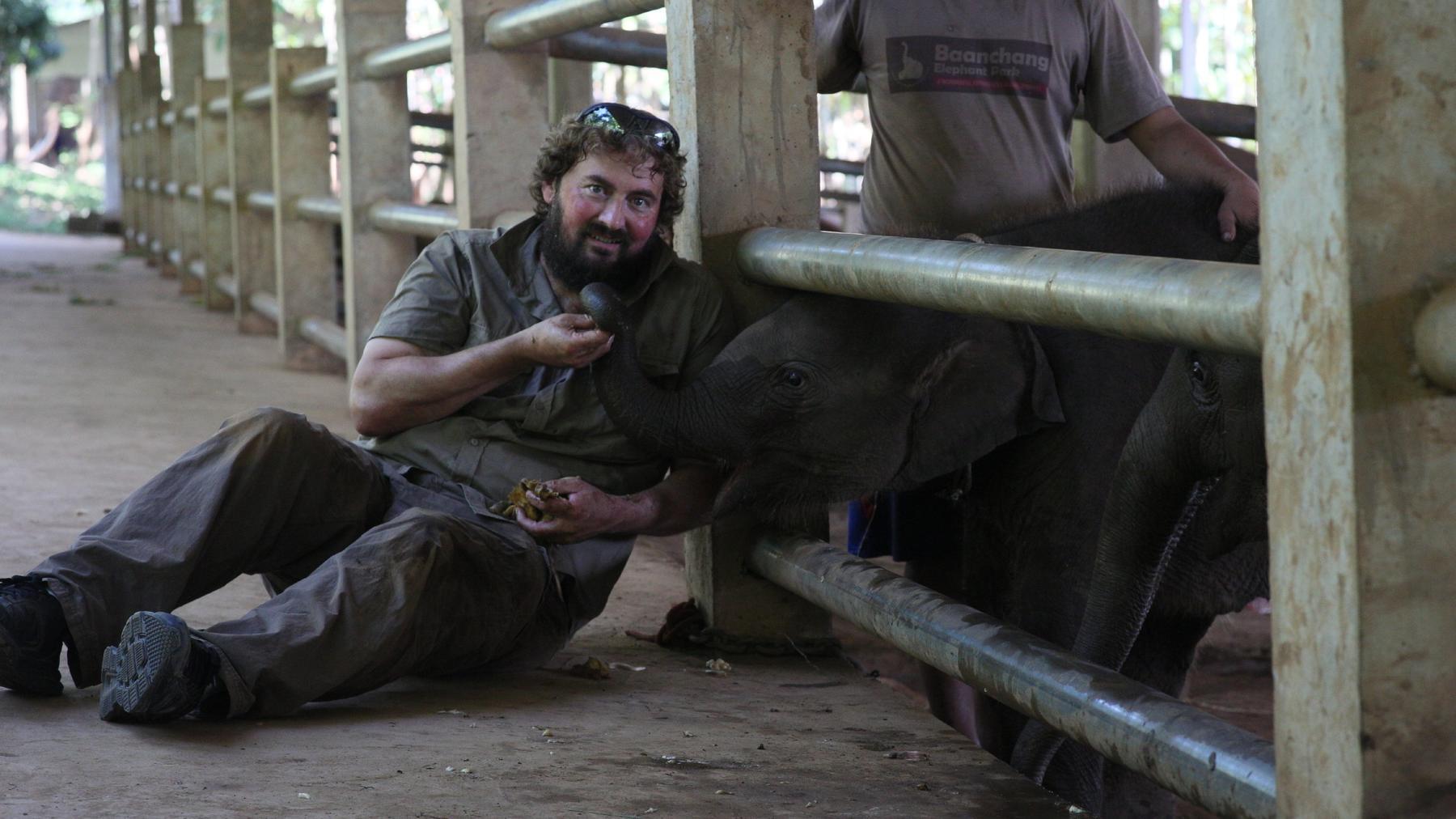 Das Elefantenkrankenhaus