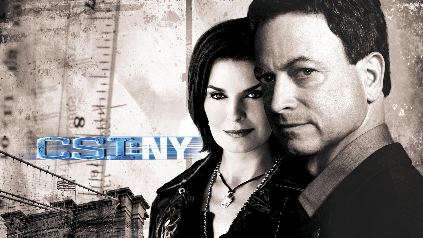 CSI: New York - Alle Staffeln