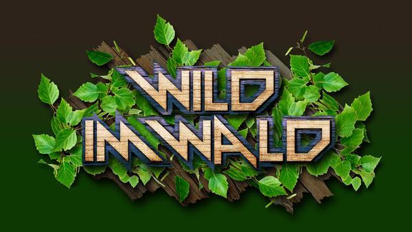 Wild im Wald