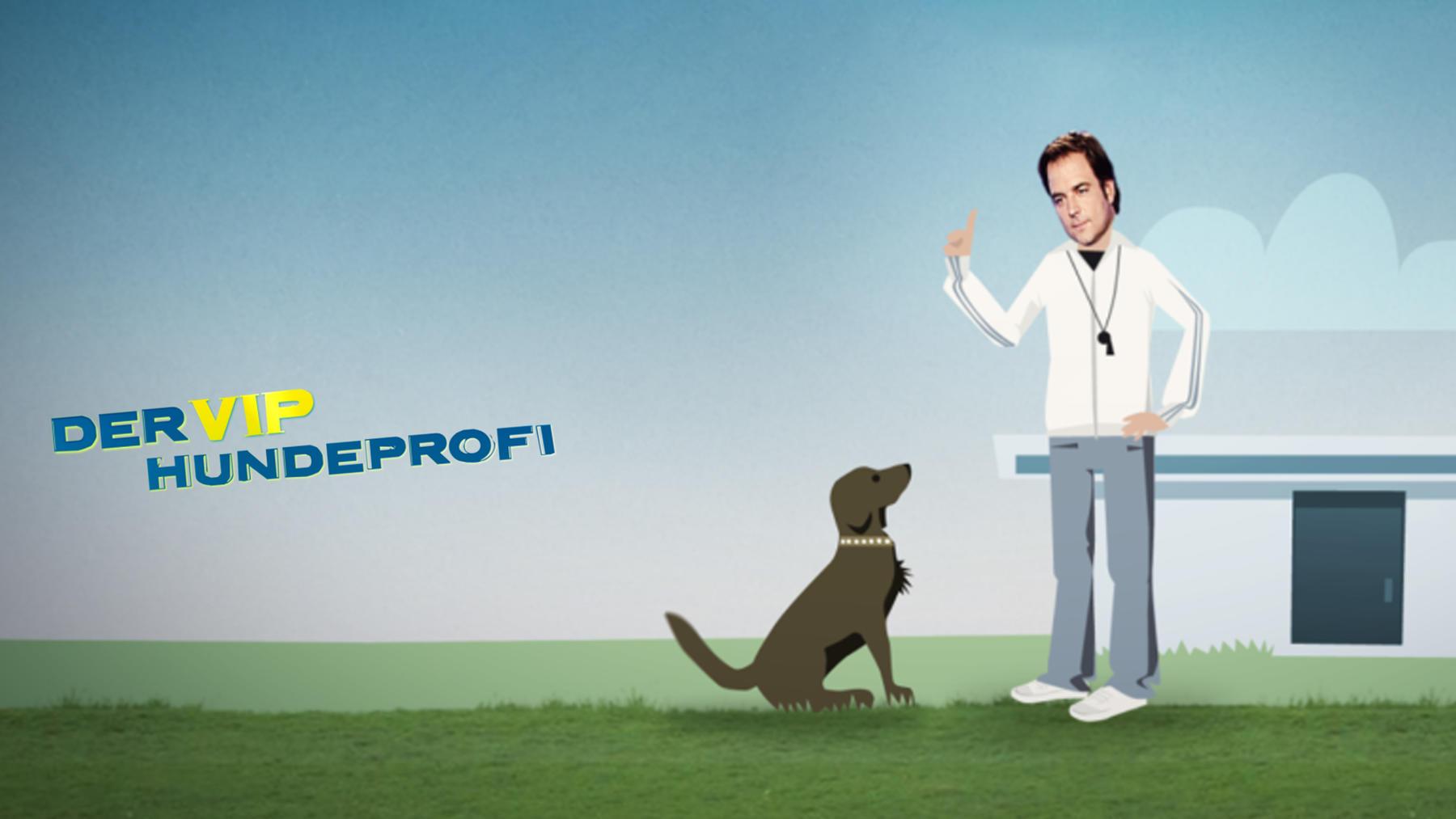 Der V.I.P. Hundeprofi