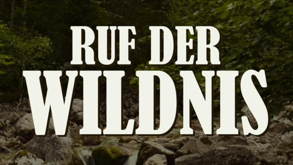 Ruf der Wildnis