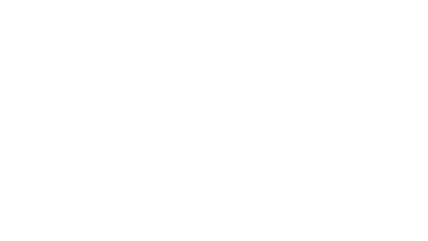 kommissar-cain