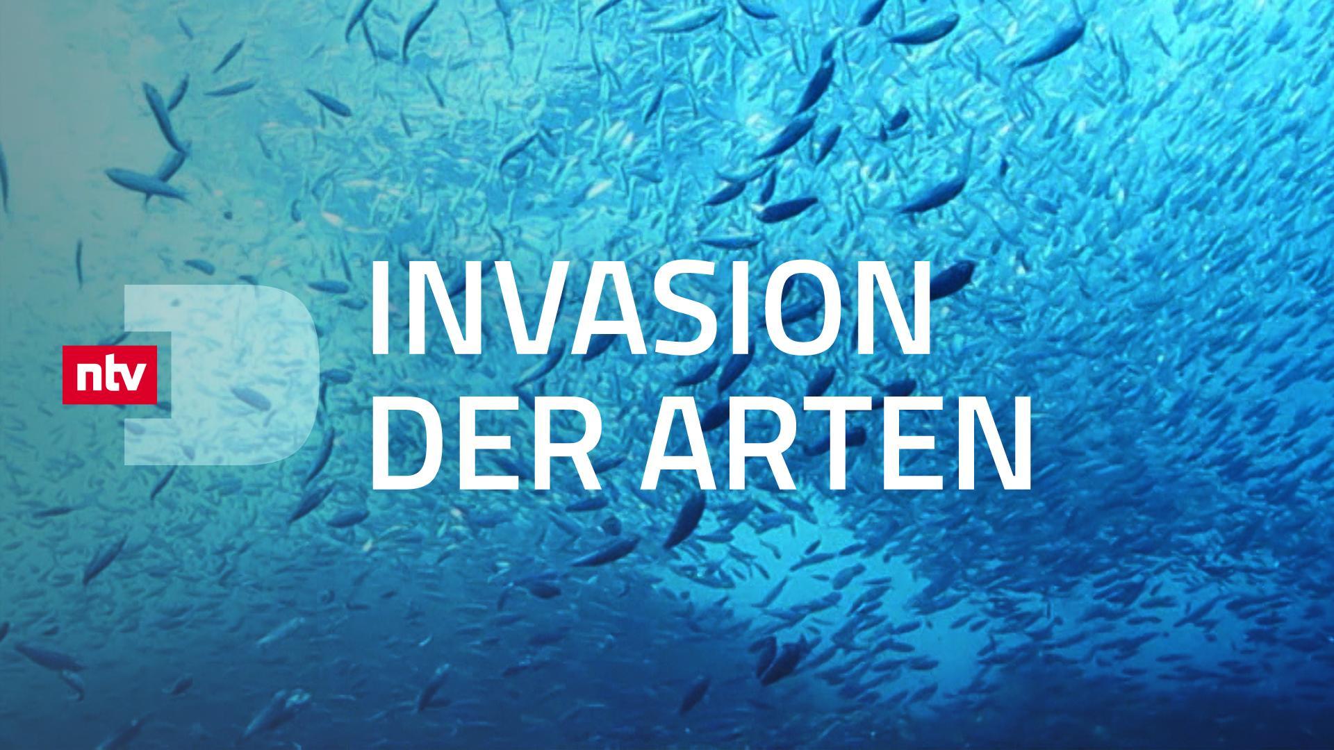 Invasion der Arten