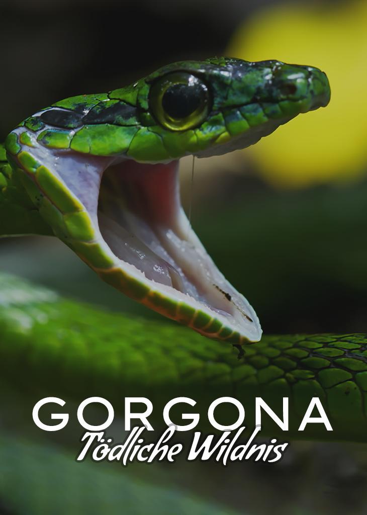 Gorgona - Tödliche Wildnis
