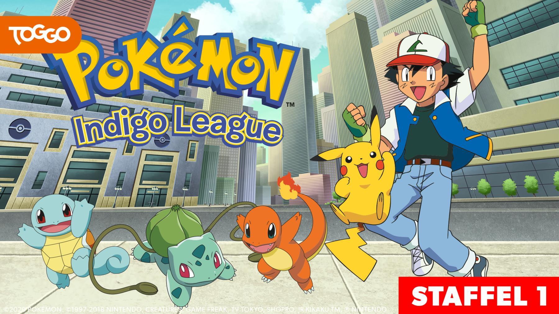 Pokémon: Indigo Liga / 1
