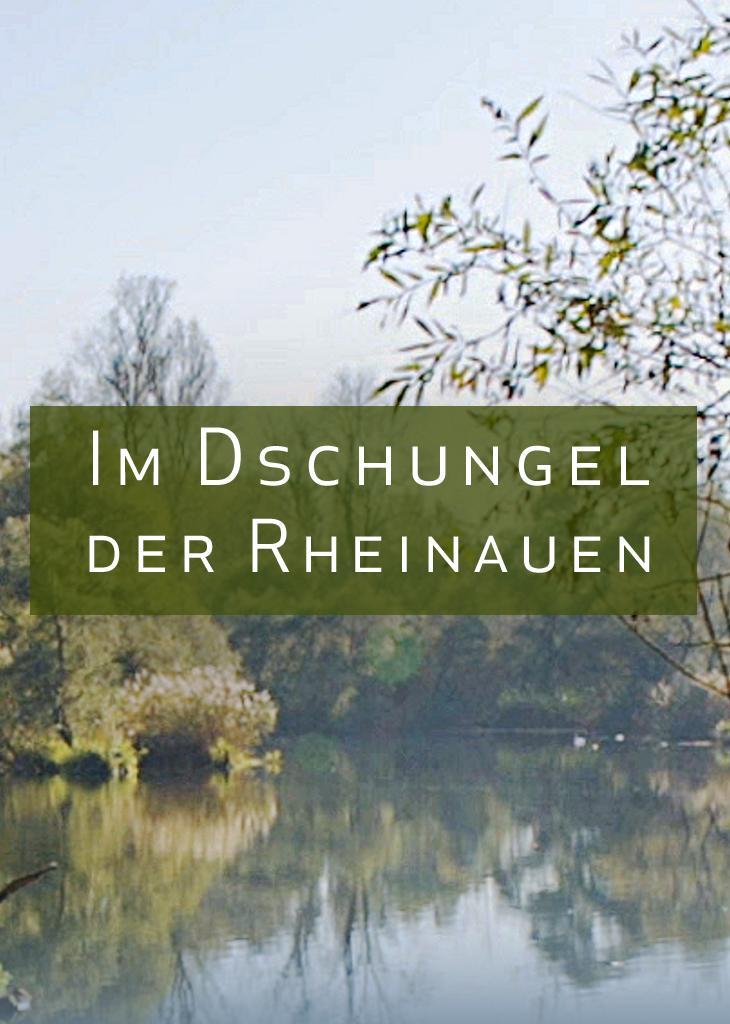 Im Dschungel der Rheinauen