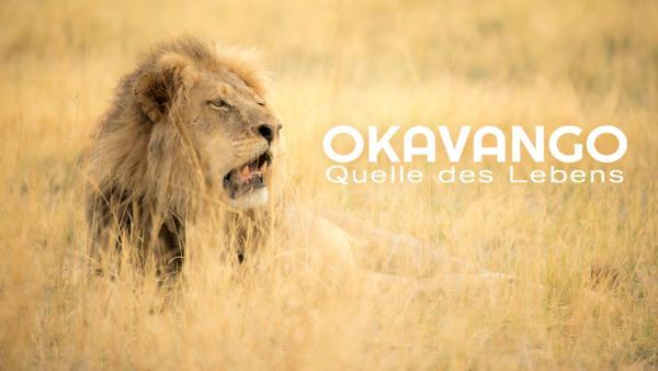 Okavango - Quelle des Lebens