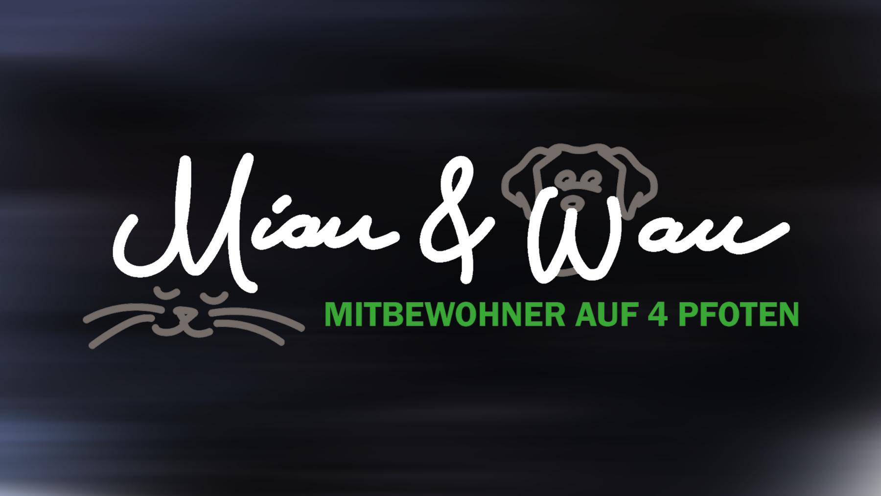 Miau & Wau - Mitbewohner auf 4 Pfoten