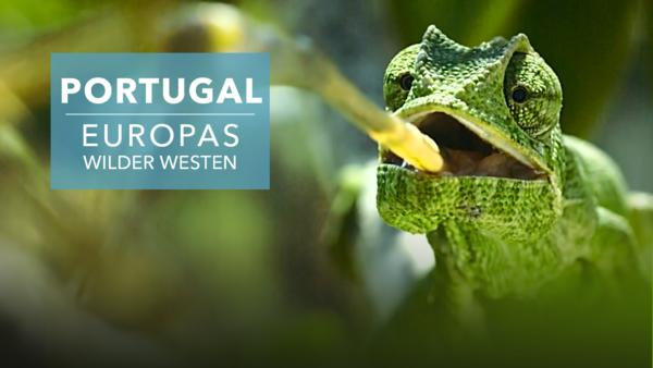 Portugal - Europas wilder Westen