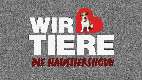 wir-lieben-tiere-die-haustiershow