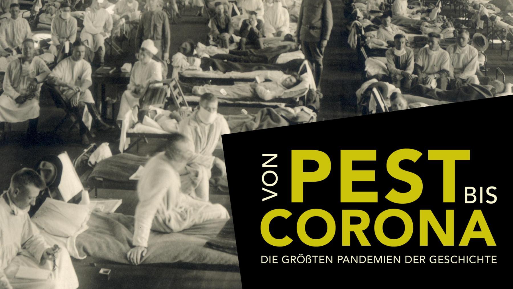 Von Pest bis Corona: die größten Pandemien der Geschichte