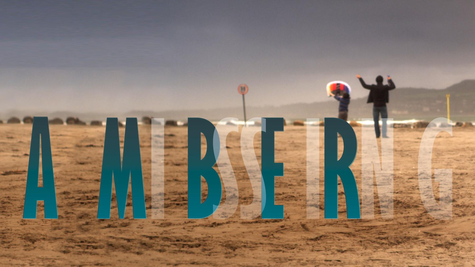Amber - Ein Mädchen verschwindet