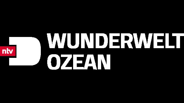 wunderwelt-ozean