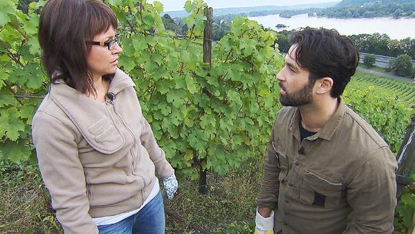 Streit um Weingut