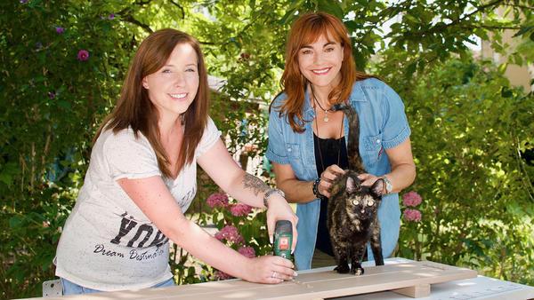 Katzentreppen selbstgemacht