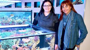Thema heute u.a.: Nachhaltige Meerwasseraquaristik