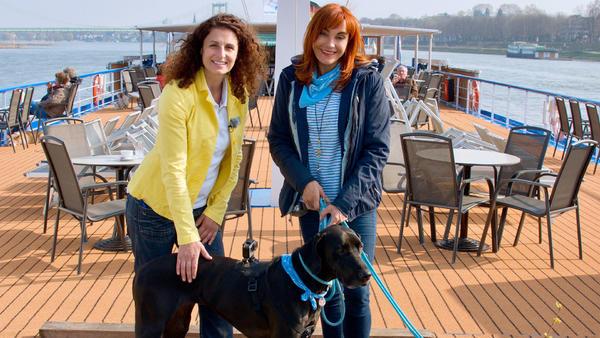 Thema heute u.a.: Flusskreuzfahrt mit Hund