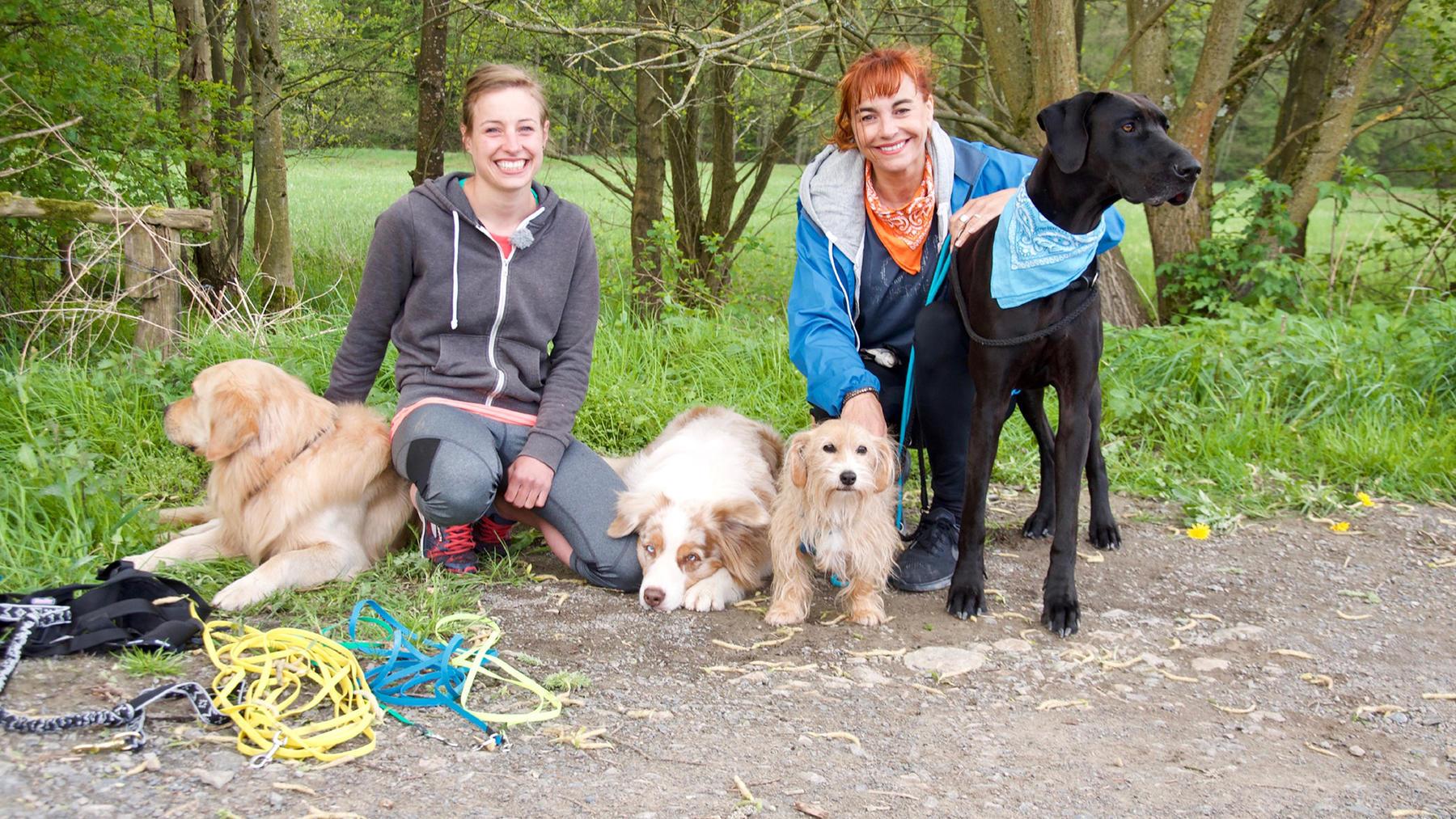Thema heute u.a.: Joggen mit Hund