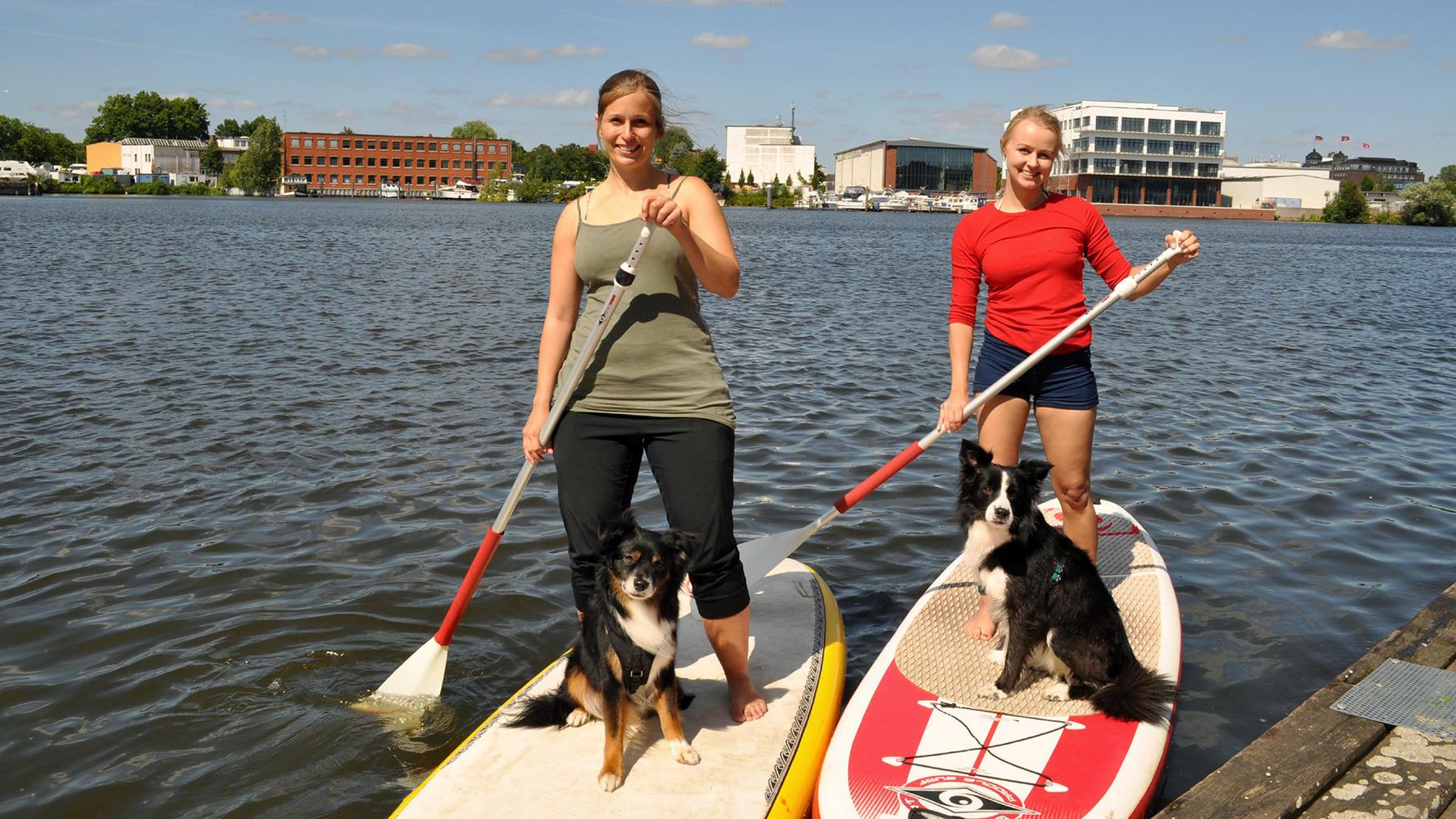 Thema heute u.a.: Stand UP Paddling mit Hund