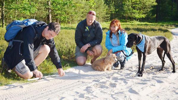 Thema heute u.a.: Wölfe in Deutschland