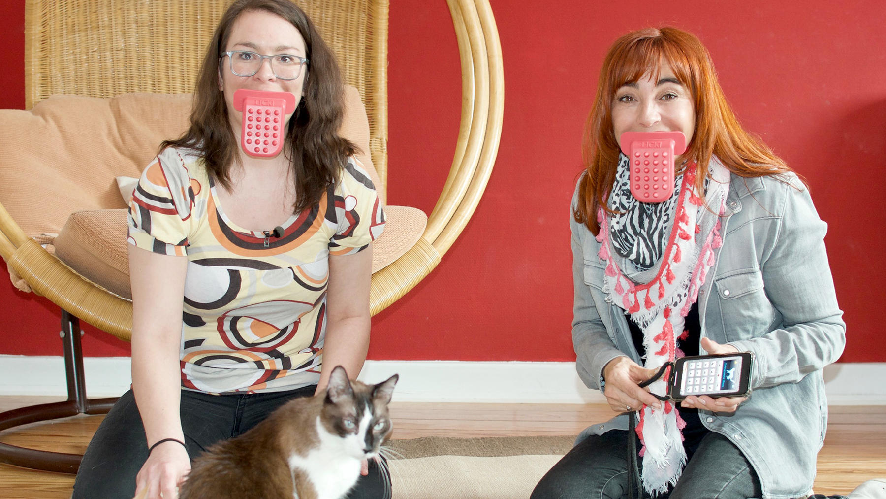 Thema heute u.a.: Katzengadgets 2.0