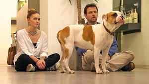 """Heute mit: Englische-Bulldogge """"Fine"""""""
