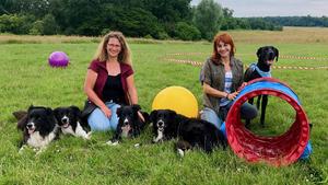 Heute u.a.: Longieren mit Hund