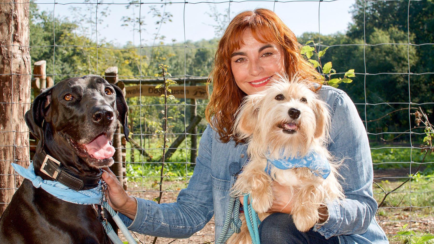 Thema heute u.a.: Der Hundewald Lünen
