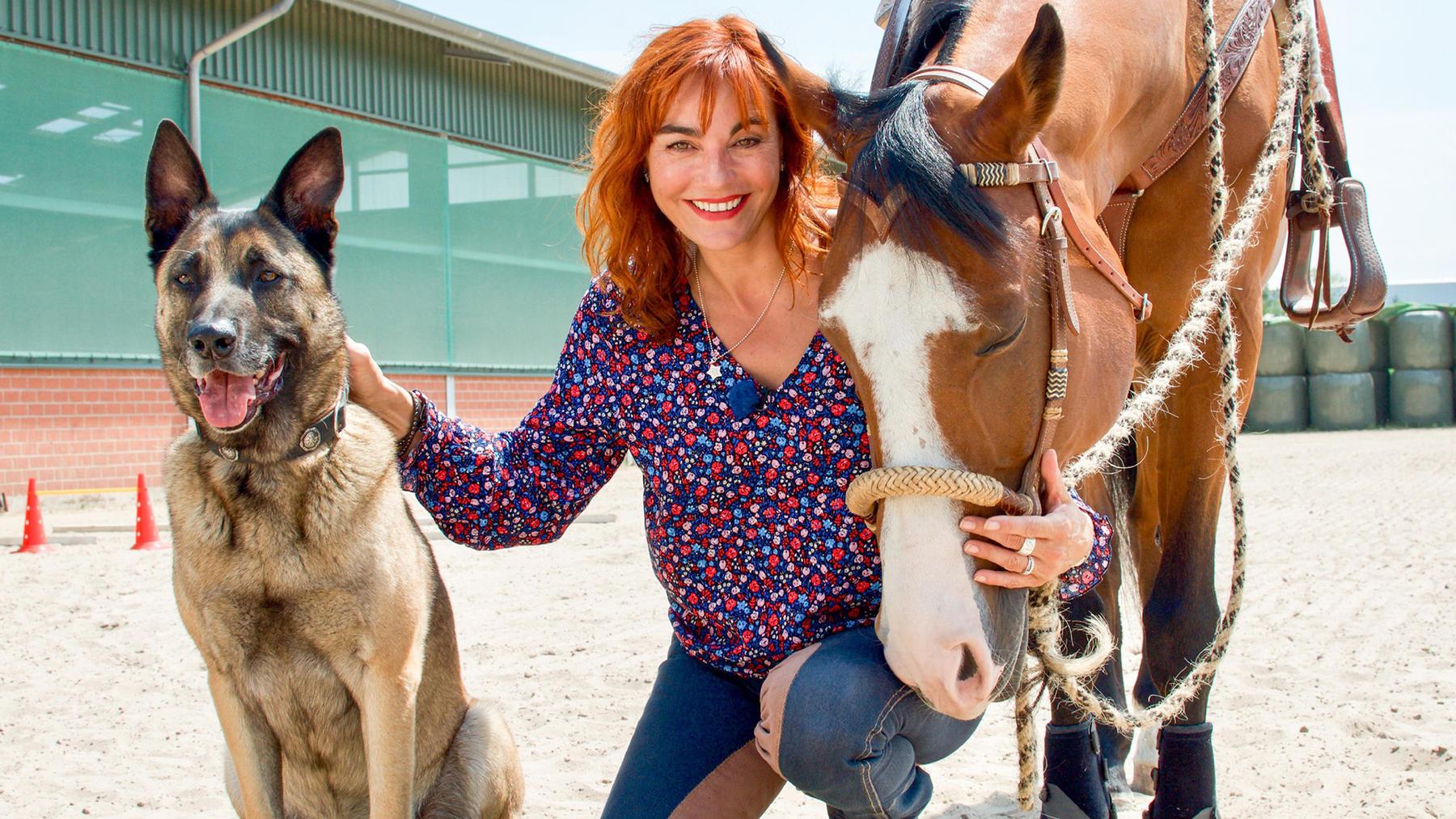 Thema heute u.a.: Horse & Dog Trail