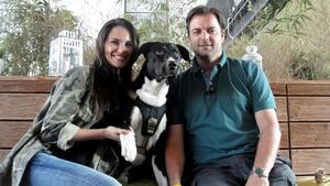 Mischlingsrüde 'Juno' / Blindenhund 'Stella'