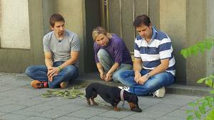 Schäferhund-Mischling 'Duc' / Dackel 'Edi'