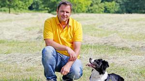 Labradormischling 'Ecki' / Dobermann-Sennenhund-Mischling 'Tyson'