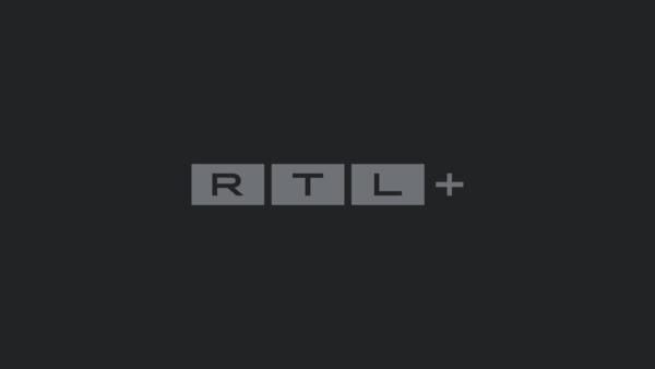 Tiger im Garten