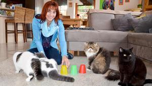 Thema heute u.a.: 7 Sünden in der Katzenhaltung!