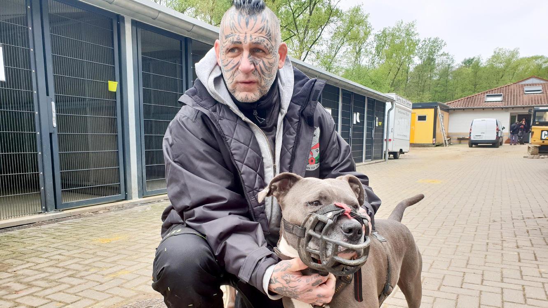 Folge 1 vom 4.01.2020   Harte Hunde   TVNOW
