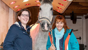 Thema heute u.a.: Pferdewellness!