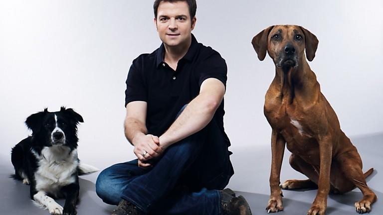 Der Hundeprofi: Nachsitzen!