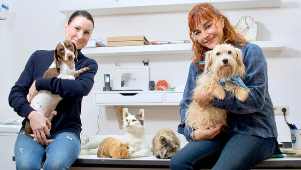 Thema heute u.a.: Diana Eichhorn beim Tierpräparator