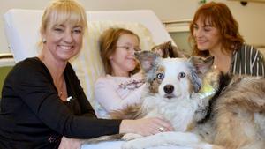 Heute u.a.: Hunde mit Auftrag - Die Krankenhauskuschler