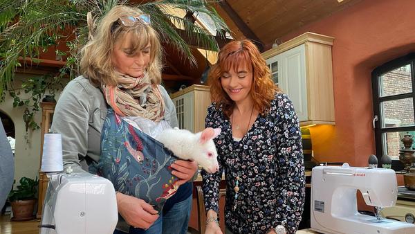 Thema u.a.: Australische Tiere in Not
