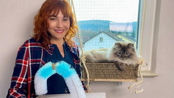 Thema u.a.: Katzeneinrichtung selbstgemacht