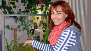 Thema u. a.: Das perfekte Terrarium für Tausendfüßler