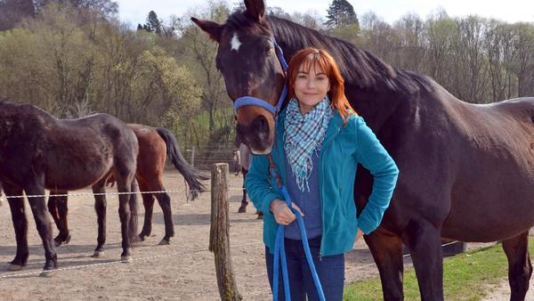 Thema heute u. a.: Pferdespielzeug