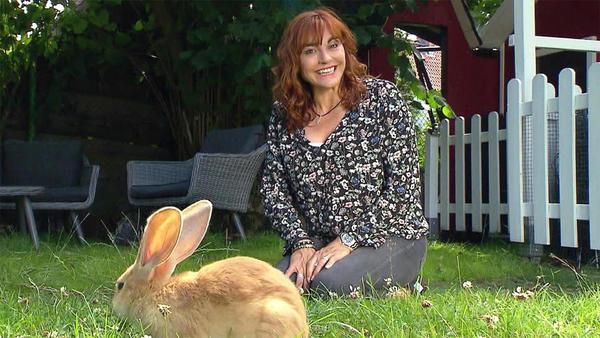 Thema u.a.: Ein Spielplatz für Kaninchen