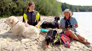 Thema u.a.: Hunde-Schwimmwesten