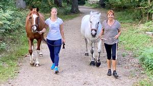 """Thema u.a.: """"Horsejogging"""""""