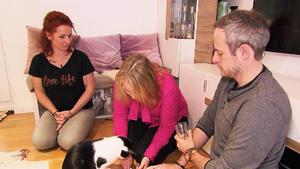 Thema u.a.: Ein neuer Fall für VOX Katzenexpertin Birga Dexel