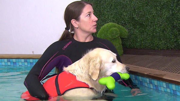 Thema u.a.: Tierische Traumberufe: Tierphysiotherapeut