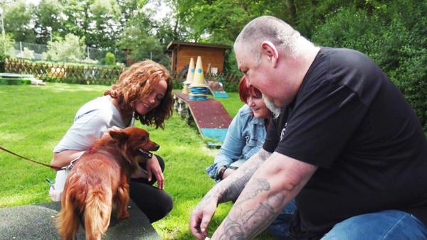 Thema u.a.: Auf der Suche nach dem richtigen Haustier